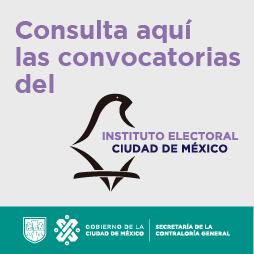 Imagen con texto:  Consulta las Convocatorias INE